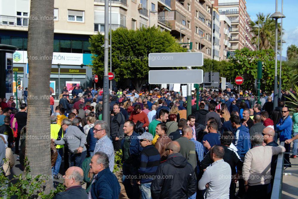 Los manifestantes, subiendo La Rambla, a la altura de la calle Javier Sanz