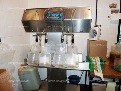 Aceite de oliva en botellas de plástico