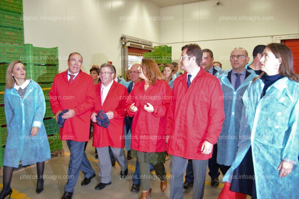 El presidente y el gerente de Vicasol enseñan las instalaciones a la consejera de Agricultura de la Junta de Andalucía y al alcalde de El Ejido, junto al resto de autoridades.