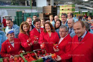 La consejera de Agricultura, junto al alcalde de El Ejido, el presidente de Vicasol y el gerente de la cooperativa, mostrando algunos de los productos