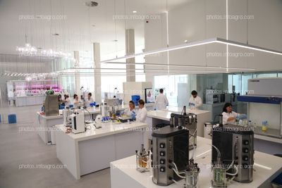 Laboratorio de Microbiología y de microalgas del MaAVi de Kimitec Group