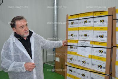 José Sáez, director de producción de Koppert España, mostrando las colmenas de Koppert para cultivos protegidos