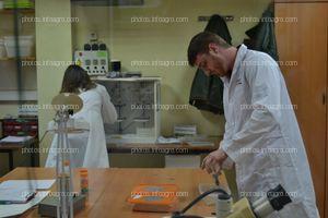 El personal de Calidad de Koppert España, durante su rutina en el laboratorio de la biofábrica de Águilas