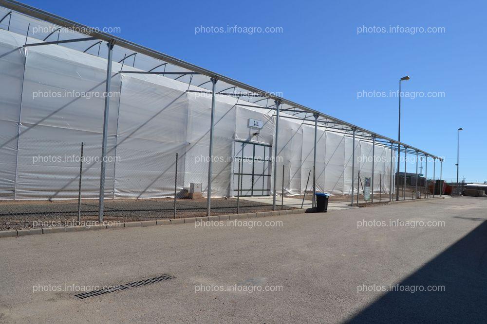 Uno de los invernaderos con que cuenta Koppert en su centro de producción en Águilas
