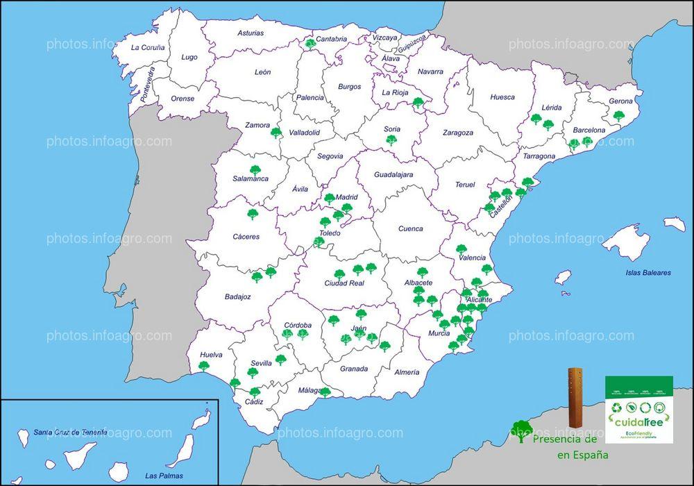 Presencia de Cuidatree en España