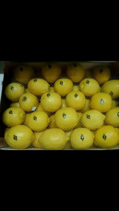 Limon Eureka Marruecos