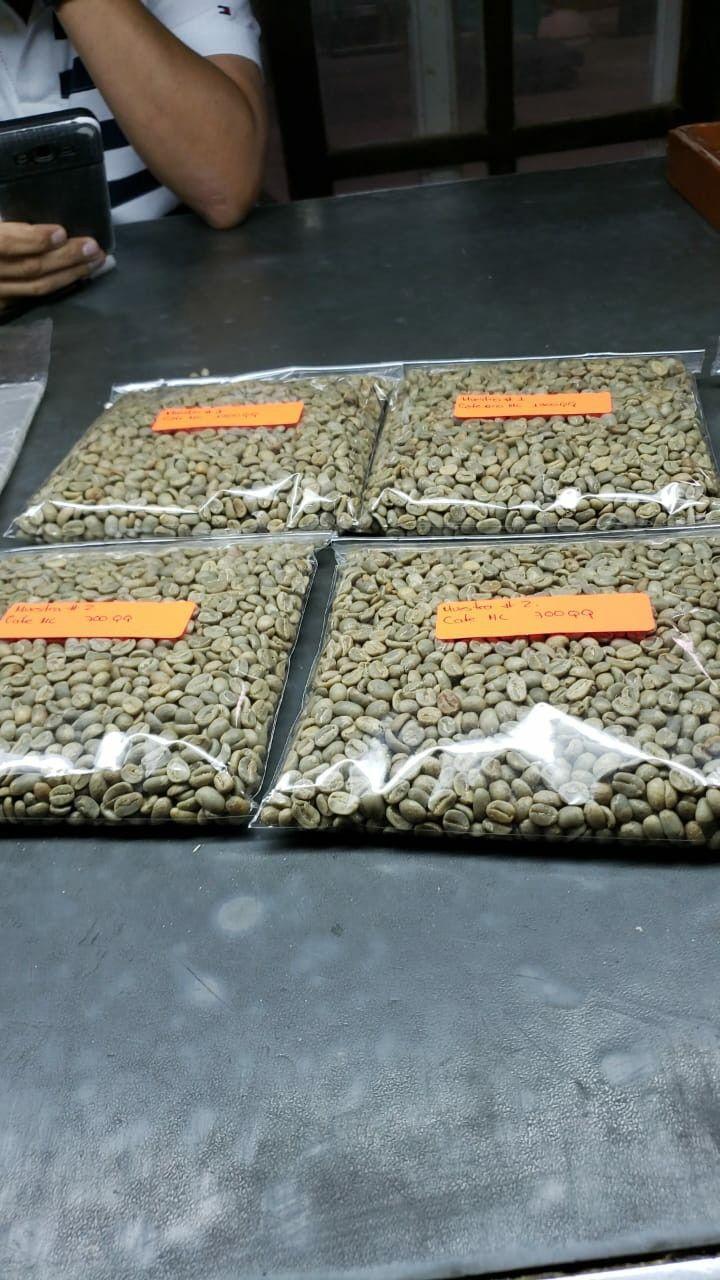 Café verde tasa limpia