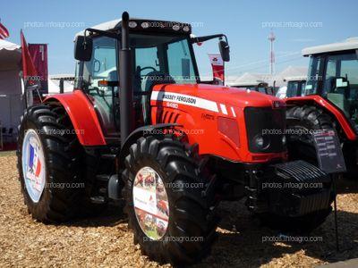 Tractor Massey Ferguson 6480 Dyna 6