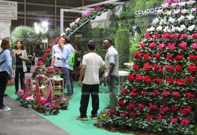 Stand de Sempreflora en Iberflora 2019