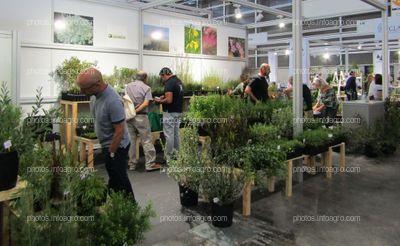 Visitantes de Iberflora 2019 en el stand de Cultidelta
