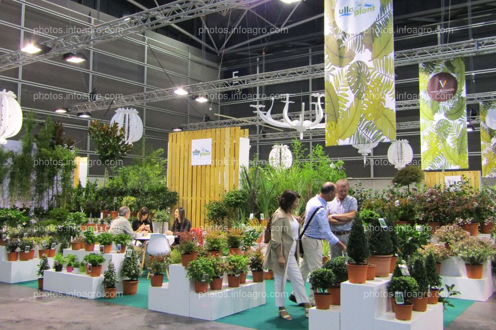 Visitantes de Iberflora 2019 en el stand de Ulla Plant