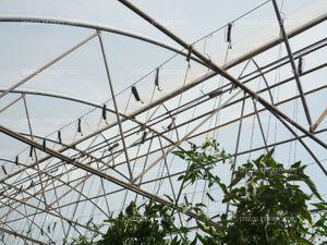 Detalle de perchas en invernadero