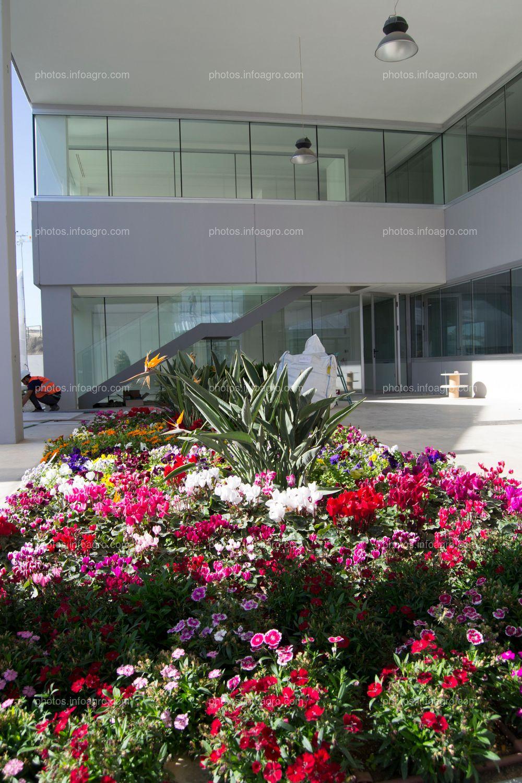 Uno de los jardines con que cuenta el MAAVi, junto a las que serán las futuras oficinas de marketing de la compañía