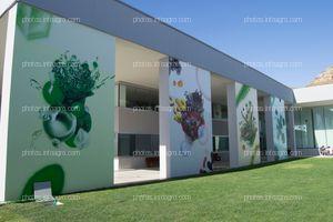 Graffiti sobre las cuatro áreas que forman parte de la tecnología 4Health de Kimitec: química verde, microbiología, microalgas y botánica